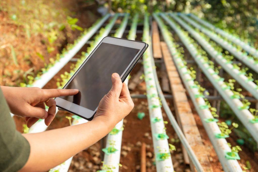 Logiciel de gestion agroalimentaire - Ellipson
